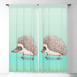Hedgehog pencil drawing Blackout Curtain