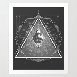 Optics  Art Print