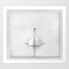 Ghostly White Swan Art Print