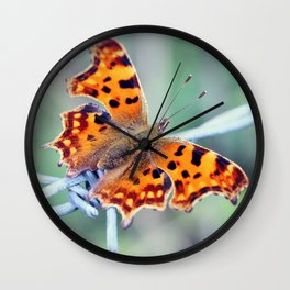 Comma Butterfly Wall Clock