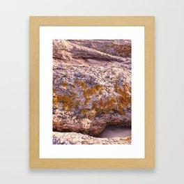Winter Island II Framed Art Print