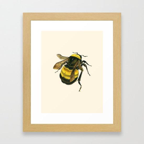 Vintage Scientific Bee by historianaturalisart