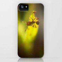 Feeling itchy iPhone Case