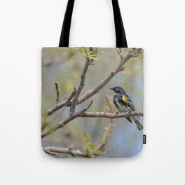 Spring Warblers Tote Bag