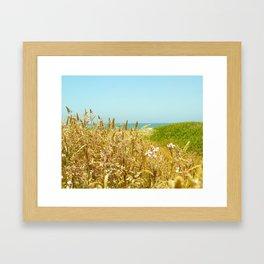 Fort Brag Seaglass Beach II Framed Art Print