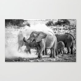 elephants showering in namibia Canvas Print