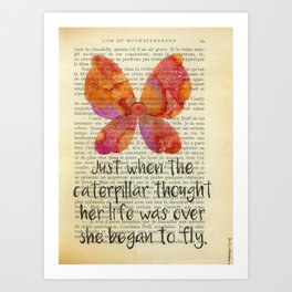 She Began To Fly Art Print