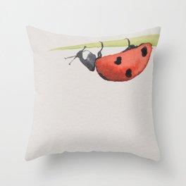 Ladybird under a blade of grass Throw Pillow