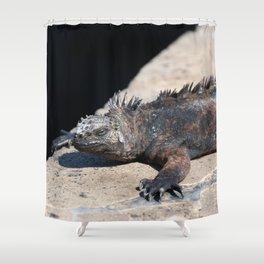 As cool as an iguana Shower Curtain
