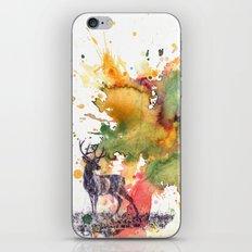 Buck Deer in Splash of Color iPhone & iPod Skin