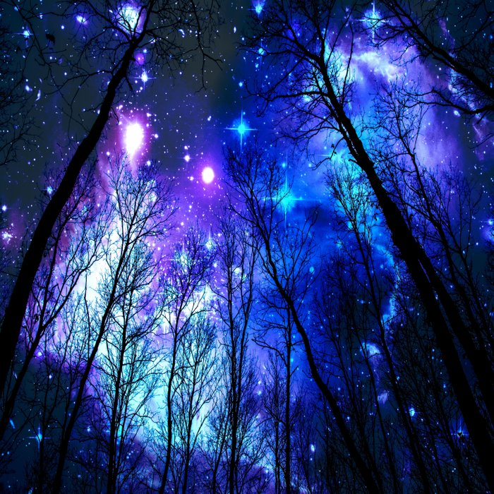 black trees purple blue space copyright protected Duvet Cover