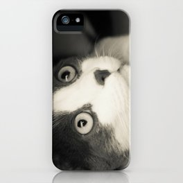 What do you think Mr Cat? iPhone Case