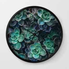 Succulent Blue Green Plants Wall Clock