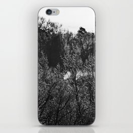 Frosted Tips iPhone Skin