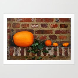 Gourds On A Windowsill Art Print