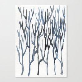 Bifurcaria bifurcata Canvas Print