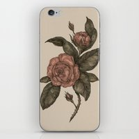 roses iPhone & iPod Skins featuring Roses by Jessica Roux