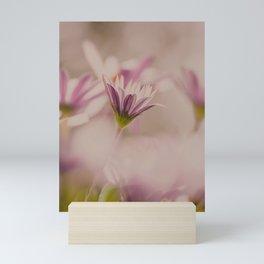 Pink Daisy Mini Art Print