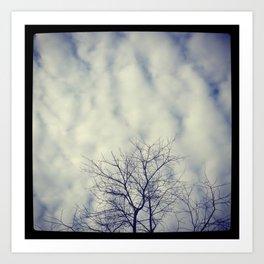 Winter sky Art Print
