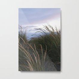 willowy wisps. Metal Print