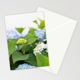 Blooming Hydrangeas Stationery Cards