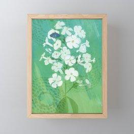 Summer Phlox and Blue Moth Framed Mini Art Print