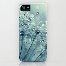 Dandy in Midnight Blue iPhone (5, 5s) Slim Case