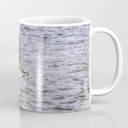 Osprey Spray Coffee Mug