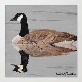 Canadian Goose 1 Canvas Print
