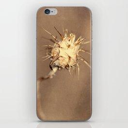 Real World iPhone Skin