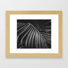 Jungle palm leaf Framed Art Print