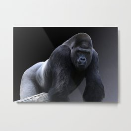 Strong Male Gorilla Metal Print