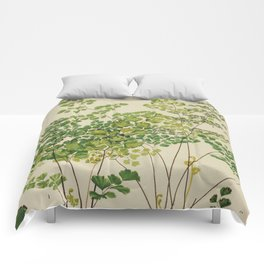 Maidenhair Ferns Comforters