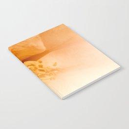camellia II Notebook