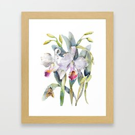 Vintage White Cattleya Orchids and Moth Poster Botanical Design Framed Art Print