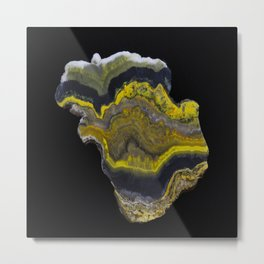 Bumble Bee Jasper Metal Print