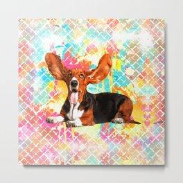 Basset Hound Dog Flying Ears Metal Print
