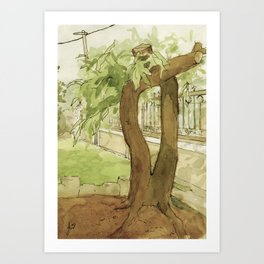 Watercolour and Ink Garden Nature Tree Sketch Outdoor Painting Landscape Green and Brown Art Print