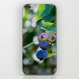 Blueberry Farm iPhone Skin