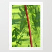 banana leaf Art Prints featuring Banana Leaf by Michael Elliott