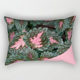 Pink on Coleus Plant Rectangular Pillow