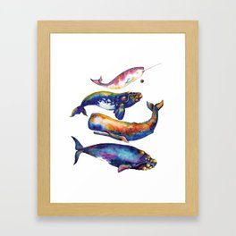 Whale Pyramid #4 - Watercolor Whales Framed Art Print