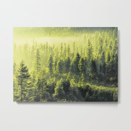 Green forest Oil painting Metal Print