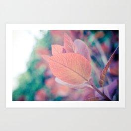 Natures Watercolor Art Print