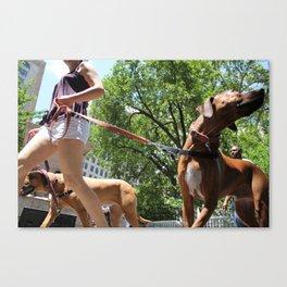 Dog Walk Canvas Print