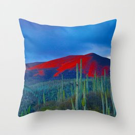 Green Cactus Field In The Desert With Red Mountains Blue Grey Sky Landscape Photography Throw Pillow