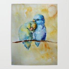 Cute Birds in Love Poster