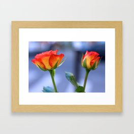 """Love planted a rose and the world turned sweet"" Framed Art Print"