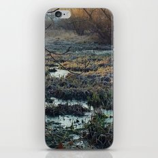 Is This What We've Seen All Along? iPhone & iPod Skin