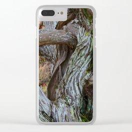 JUNIPER LOVE Clear iPhone Case